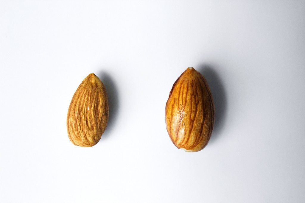 DIY Almond Milk and Almond Meal or Butter From One Cup Of Almonds!